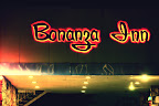 Everyone Deserves a Bonanza 2.jpg
