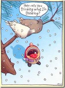 dove-snow