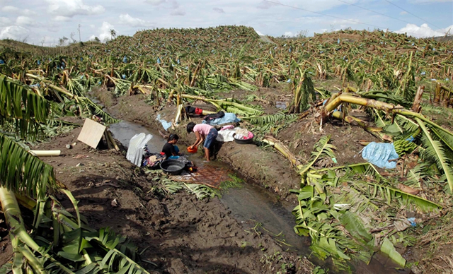 Villagers wash their clothes amidst a destroyed banana plantation after Typhoon Bopha hit Compostela Valley, southern Philippines, 5 December 2012. Erik De Castro / Reuters