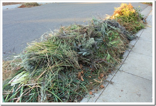 121104_yardwaste4