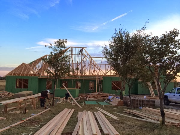 Week 10 Roof