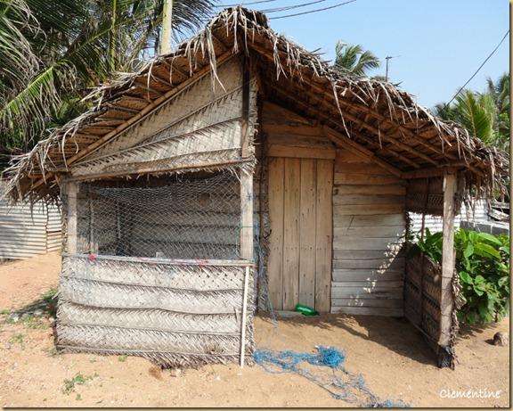 Maison en feuilles de palmier Sri Lanka