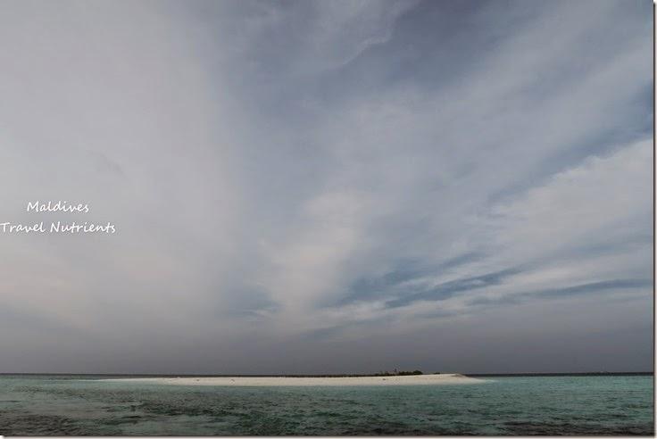 馬爾地夫 野餐島 浮潛 (61)