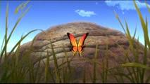 07 un papillon