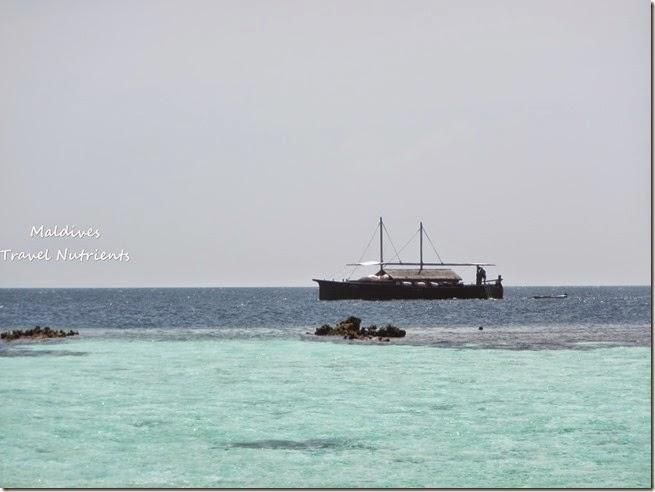 馬爾地夫 野餐島 浮潛 (65)