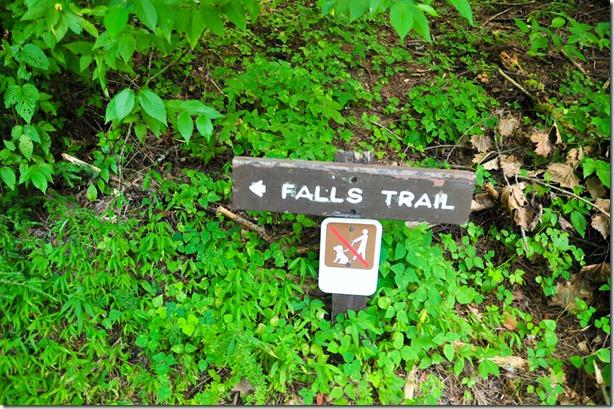abrams falls-6781
