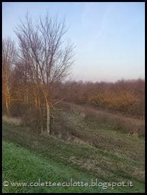 Passeggiata al Dosolo - 1 gennaio 2013 (6)