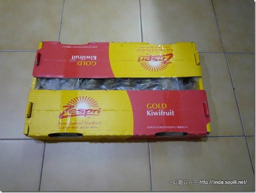 Zespri黃金奇異果-1