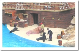 Florida vacation Epcot pirate show with seals and walrus
