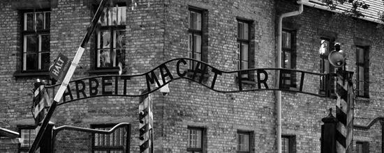 Vers l'album (Entrée de Auschwitz I)