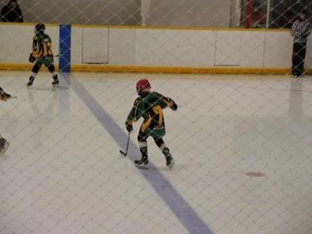 20150329_090437-hockey