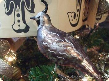christmas 2012 029