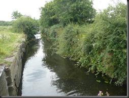 Erewash canal 08.13 014
