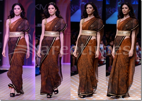 Archana_Kochhar_Printed_Saree