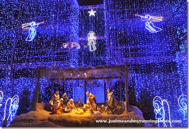 Osborne Family Spectacle of Dancing Lights (5)