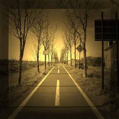 2011.11.10-1 サイクリングロード