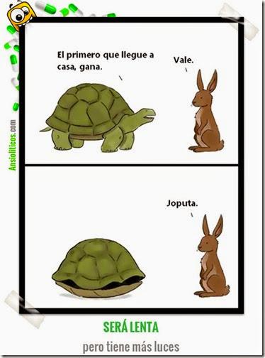 humor tortugas (35)