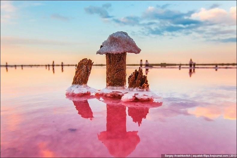 sivash-salt-lagoons-22