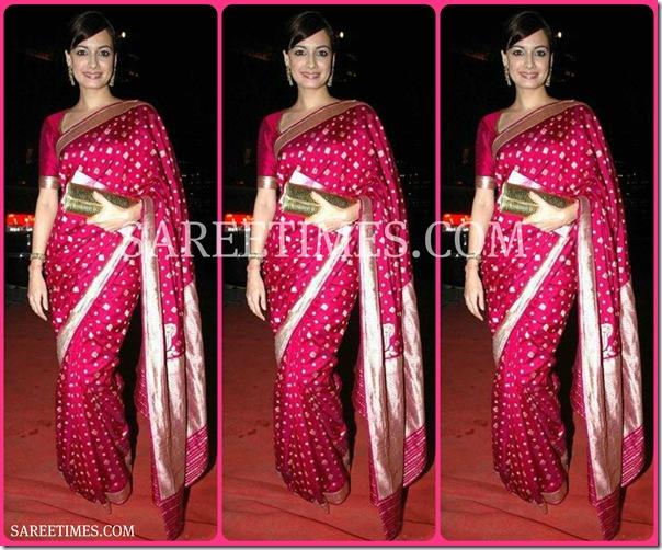 Dia_Mirza_Pink_Saree