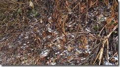 螢幕截圖 2014-11-13 22.47.29