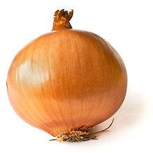 220px-Onion_on_White
