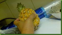 pineapple (1)