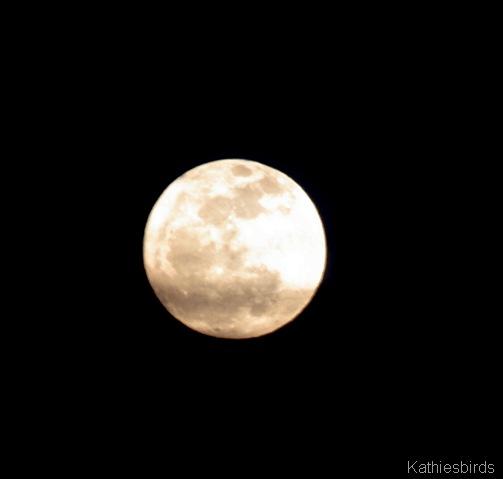 4. Moon-kab
