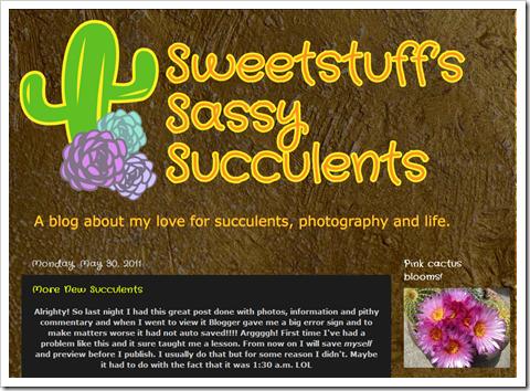110603_sweetstuffssassy