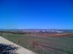 Olivares y campos de labor