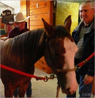 horseback ride 67