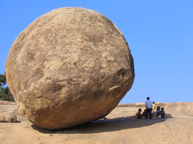 krishnas-butterball-9