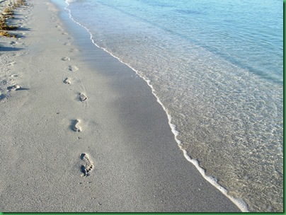 Friday Nokomis Beach (54)
