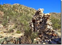 Wild Burro Hike Jan 21 075 (2)