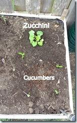 Planting 04282012-5