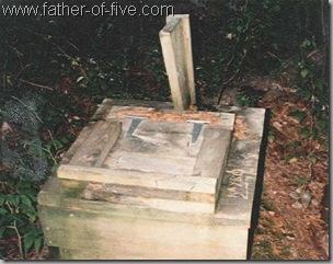 BWCA - Moss Box