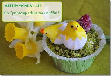 muffin-monday-30-logo