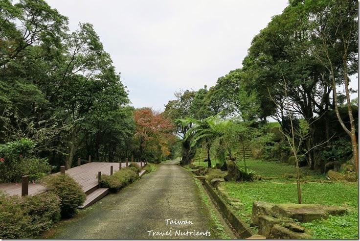 三峽熊空茶園 (42)