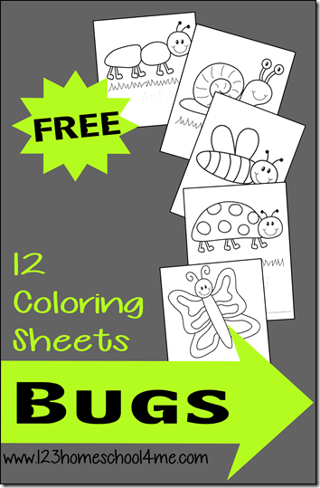 Free Bug Coloring Pages for Preschoolers