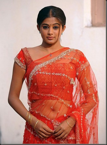 Priyamani Latest Hot Images Stills Bay Movie Actor Actress