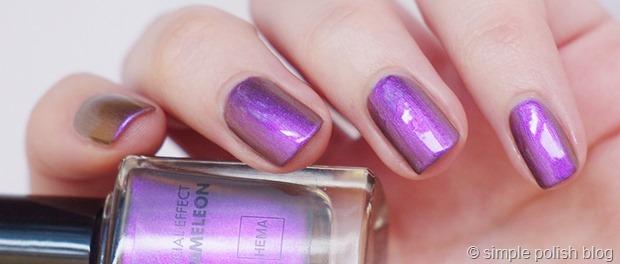 Hema-Chameleon-Purple-2