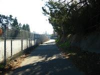 IrHorse CCCanel Trail 184.JPG