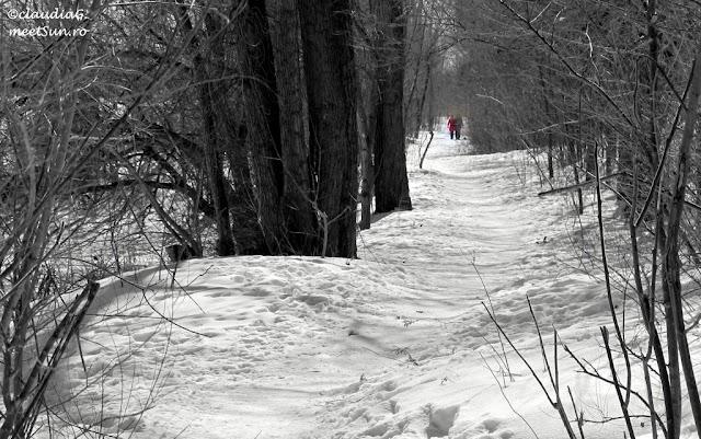 Montreal-iarna-St-Laurent-02_rw.jpg