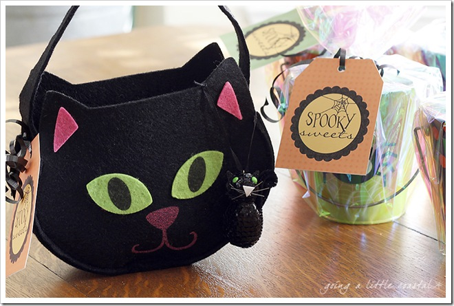 kitty bag copy