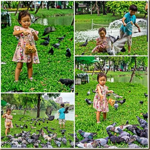 Feeding Birdies Page