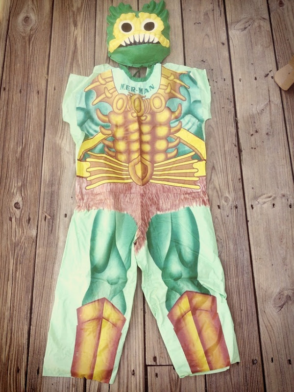 Masters Of The Universe Costumes