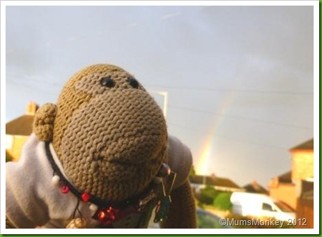 monkey and rainbow