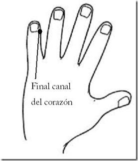 Mano izquierda - final canal del corazón