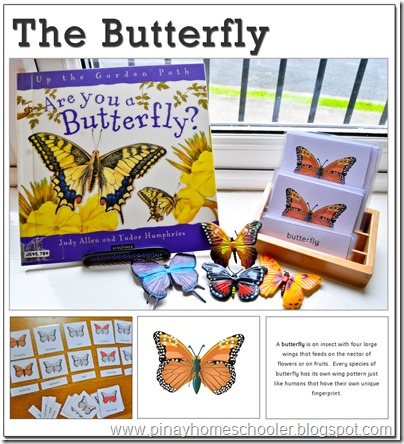 The Butterfly Study