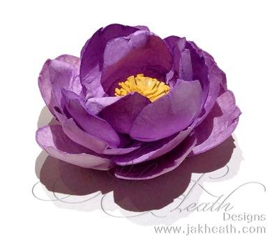 CC flower