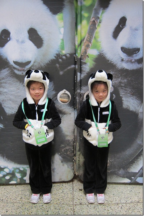 IMG_2974LR_Pandas